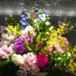 今週の生け花